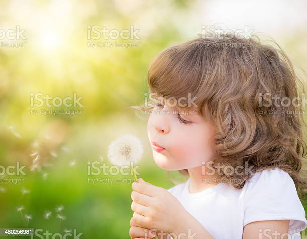 Happy Child Blowing Dandelion Stock Photo - Download Image Now