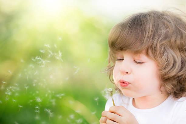 Criança feliz, soprando dente-de-Leão - foto de acervo