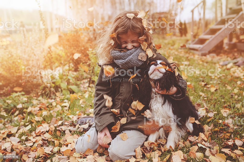 happy child girl playing with her dog in autumn stock photo