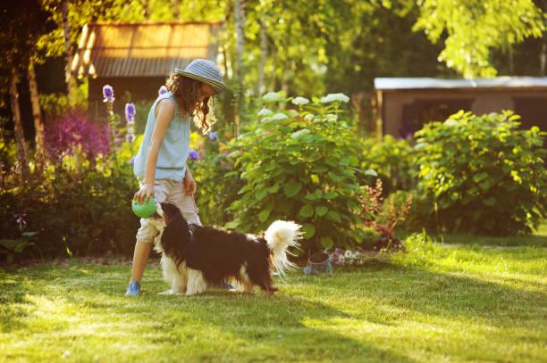 Happy child girl playing with her spaniel dog and throwing ball picture id918755266?b=1&k=6&m=918755266&s=612x612&w=0&h=vjyv w4waqaqiiv7mldun 1kyloggv dvlt4u8 yehq=