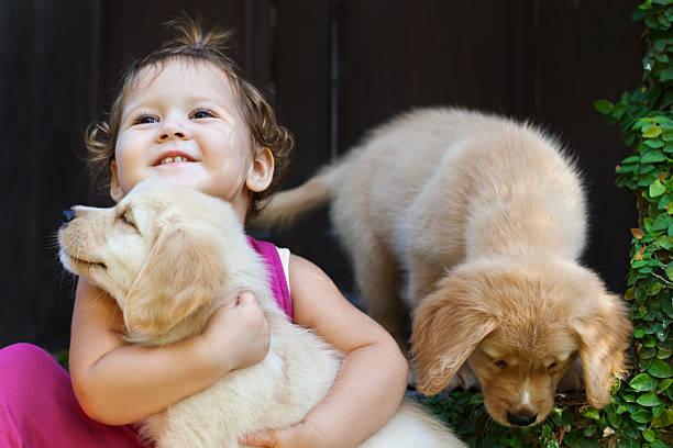 Happy child play and hug family pet labrador puppy picture id614836094?b=1&k=6&m=614836094&s=612x612&w=0&h=tt1ycgnviqvmroqm7lkl3zobzpha8br41feupe7yqfk=