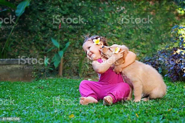 Happy child play with family pet labrador puppy picture id614962556?b=1&k=6&m=614962556&s=612x612&h=kxmyrjhrrxtgmiqpywy3fsyagbs xw6ljq2xf iabrk=