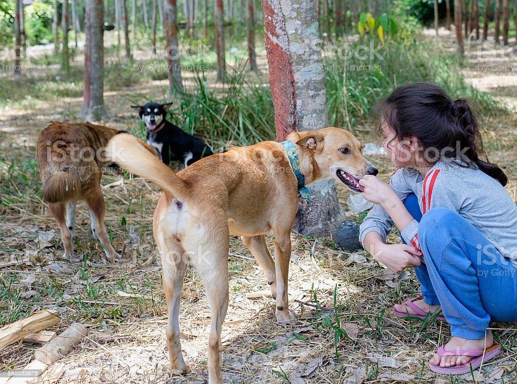 Heureux Enfant jouant avec chien photo libre de droits
