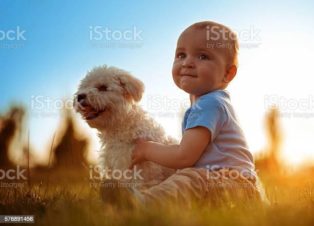 Happy child playing with his dog picture id576891456?b=1&k=6&m=576891456&s=612x612&h=q3sdzmhvlzmhbnicow7pb gfnzi0tkqcxt0648esepu=