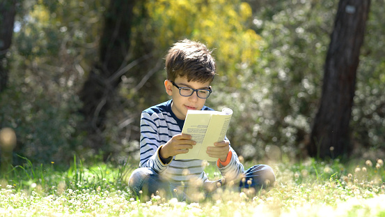 Happy child reading a book in forest