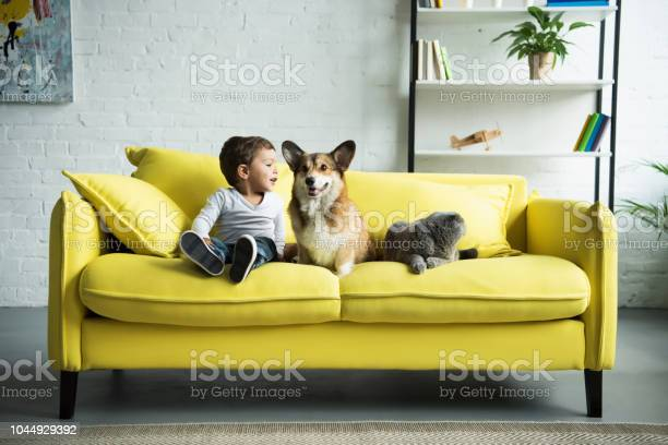 Happy child sitting on yellow sofa with pets picture id1044929392?b=1&k=6&m=1044929392&s=612x612&h=v14pcuwntst o69fgpdhihsszg7mblpsudgtpd450ss=