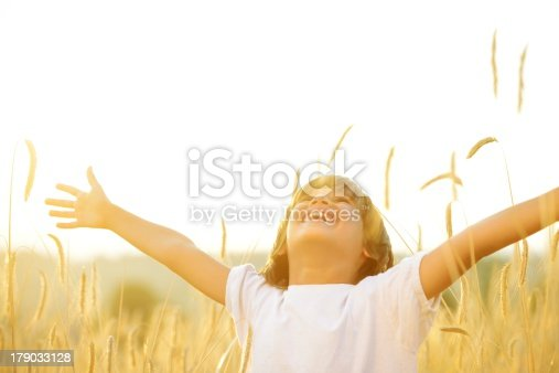 istock A happy child spreading their arms in a field 179033128