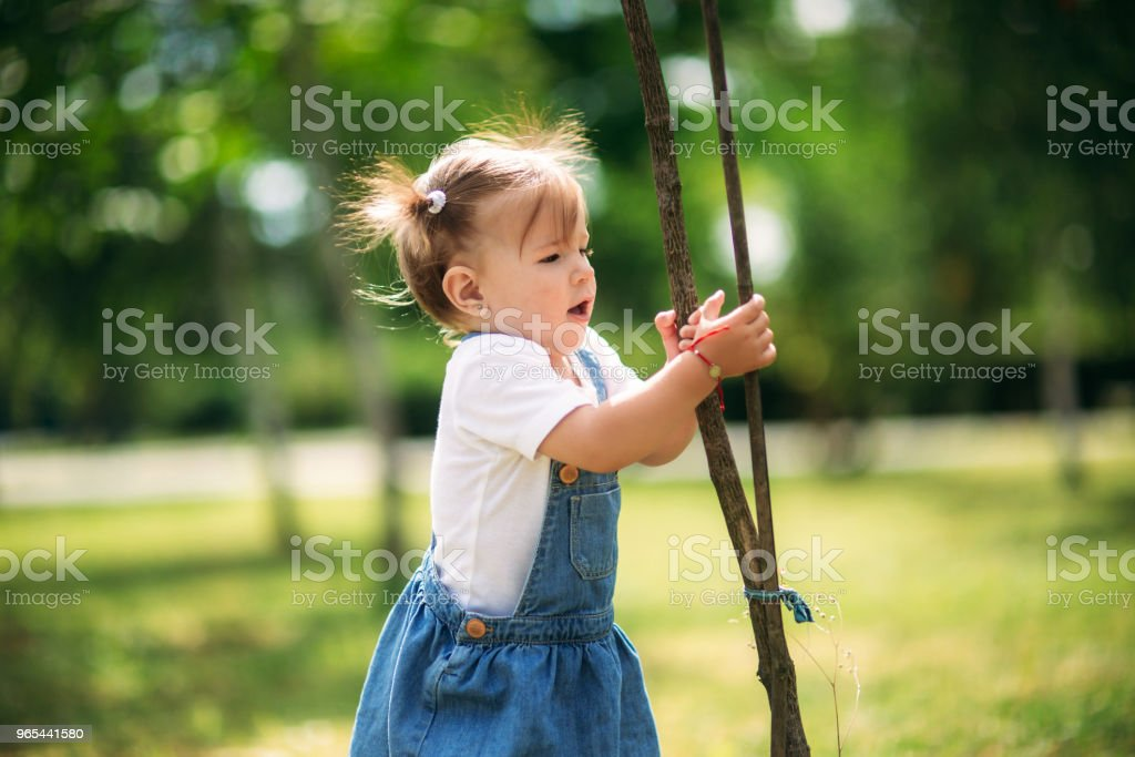 Happy child walks in the park in summer royalty-free stock photo