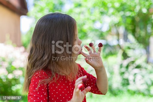 Happy child with raspberry on her fingers outdoors in summer