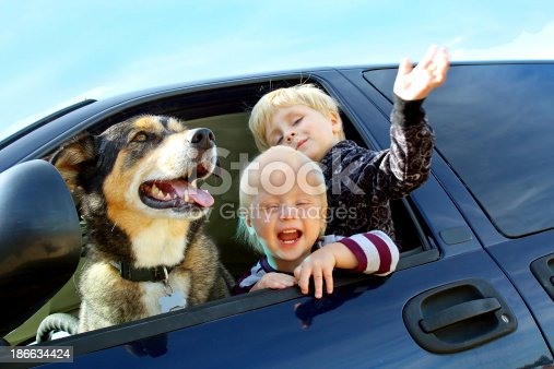 istock Happy Children and Dog in Minivan 186634424