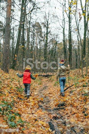 istock Happy children enjoying autumn in forest 1161200216