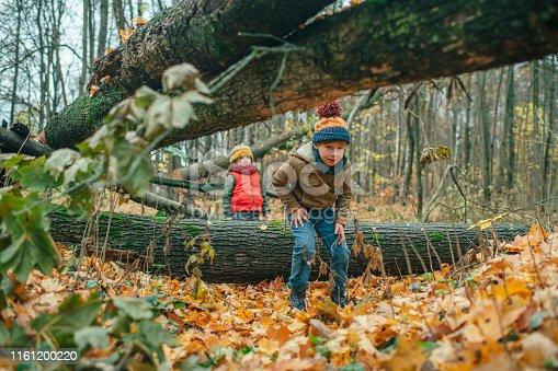 istock Happy children enjoying autumn in forest 1161200220