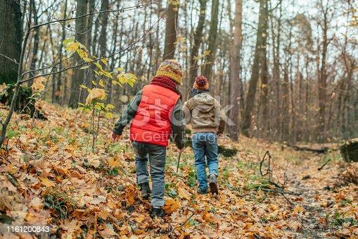 istock Happy children enjoying autumn in forest 1161200843
