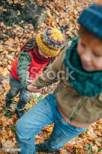 istock Happy children enjoying autumn in forest 1168153566