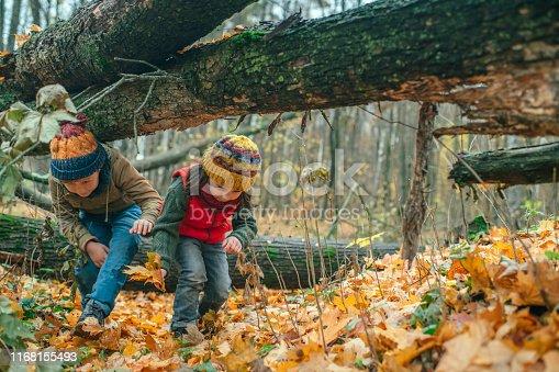 istock Happy children enjoying autumn in forest 1168155493