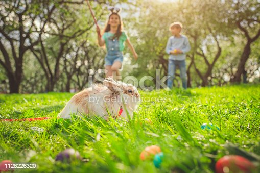 Happy little boy and girl playing with bunny in park on Easter egg hunt