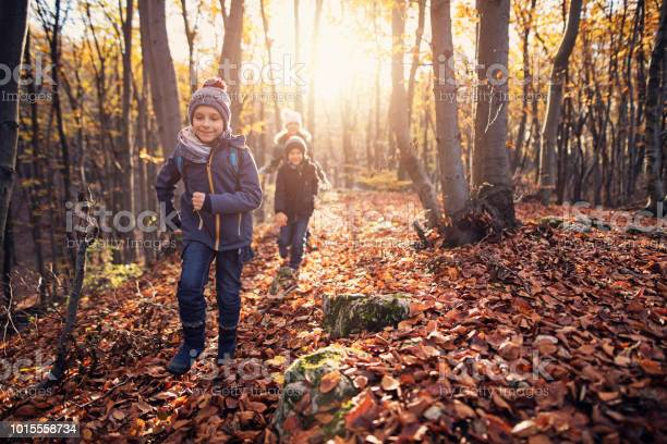 Happy children running in autumn forest picture id1015558734?b=1&k=6&m=1015558734&s=612x612&h=uh5vh jnuax6 qupzk6nvsvtarmipazllkoz3qigtpa=