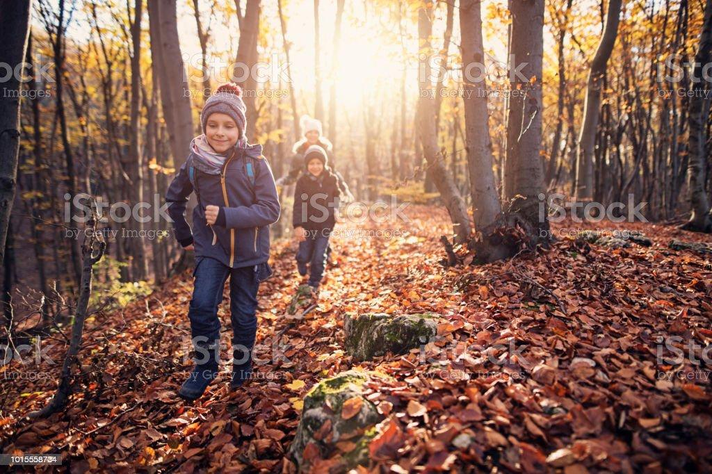 Happy children running in autumn forest stock photo