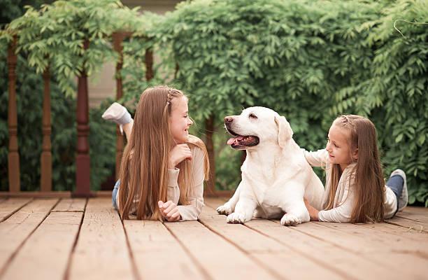 Happy children with dog picture id546182090?b=1&k=6&m=546182090&s=612x612&w=0&h=dw2ezgbkmv3i12s9lxo1xqutvvgwryhzhg9p2suhcz8=