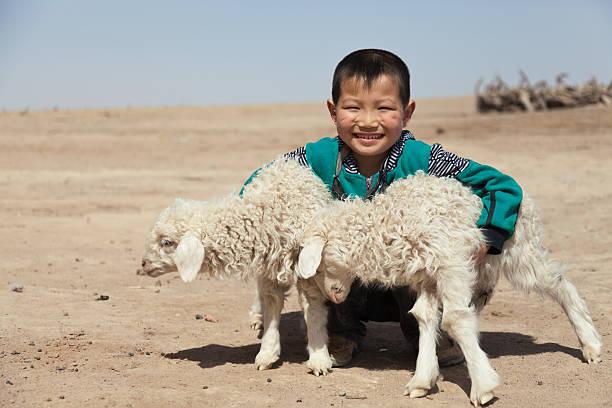 Happy Chinese Junge mit seinem lambs outdoor蹲 – Foto