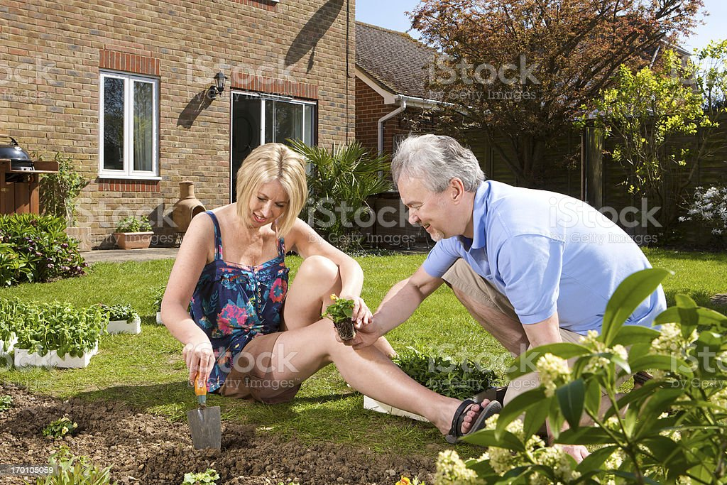 Happy couple in garden planting flowers in the summer sunshine royalty-free stock photo