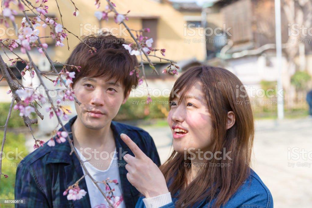 桜と京都で幸せなカップル ストックフォト