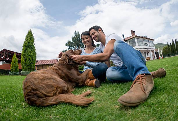 happy couple pampering their dog - hunde aus dem tierheim stock-fotos und bilder