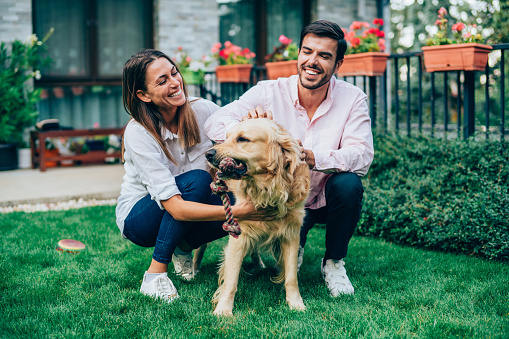 Happy couple having fun outside with their dog. Cheerful young couple playing with cute Golden Retriever in backyard of their house.