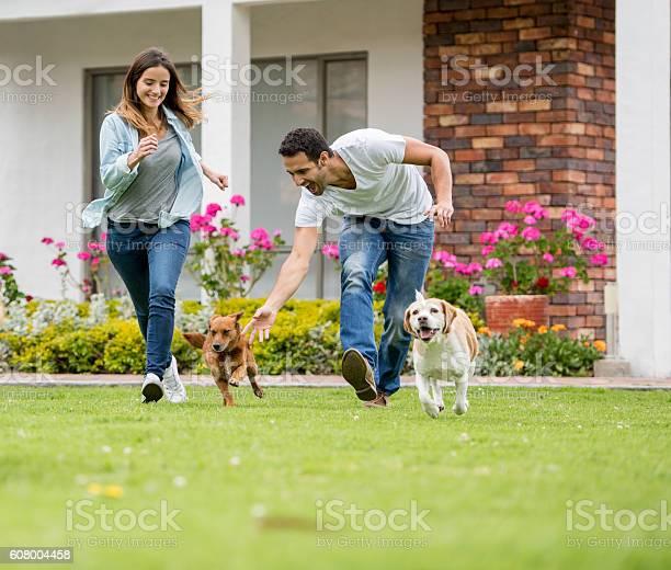 Happy couple playing with their dogs picture id608004458?b=1&k=6&m=608004458&s=612x612&h=l5w8rllllwai1s8gnigu3nruqjgdiurwqeobyjshpqg=