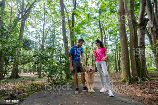 Happy couple running outdoors with their dog picture id1136817883?b=1&k=6&m=1136817883&s=612x612&h=0imgyc3asx6p0  adqqqn1lo5w6typtbpytrhofqqus=