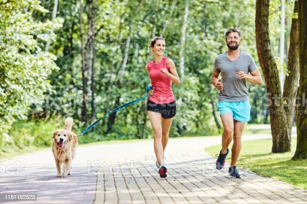 Happy couple running with dog in park picture id1151152523?b=1&k=6&m=1151152523&s=612x612&h=k3g8dkxovxadpqsddwu6jt5gryocuwtdgmuoglcj06q=