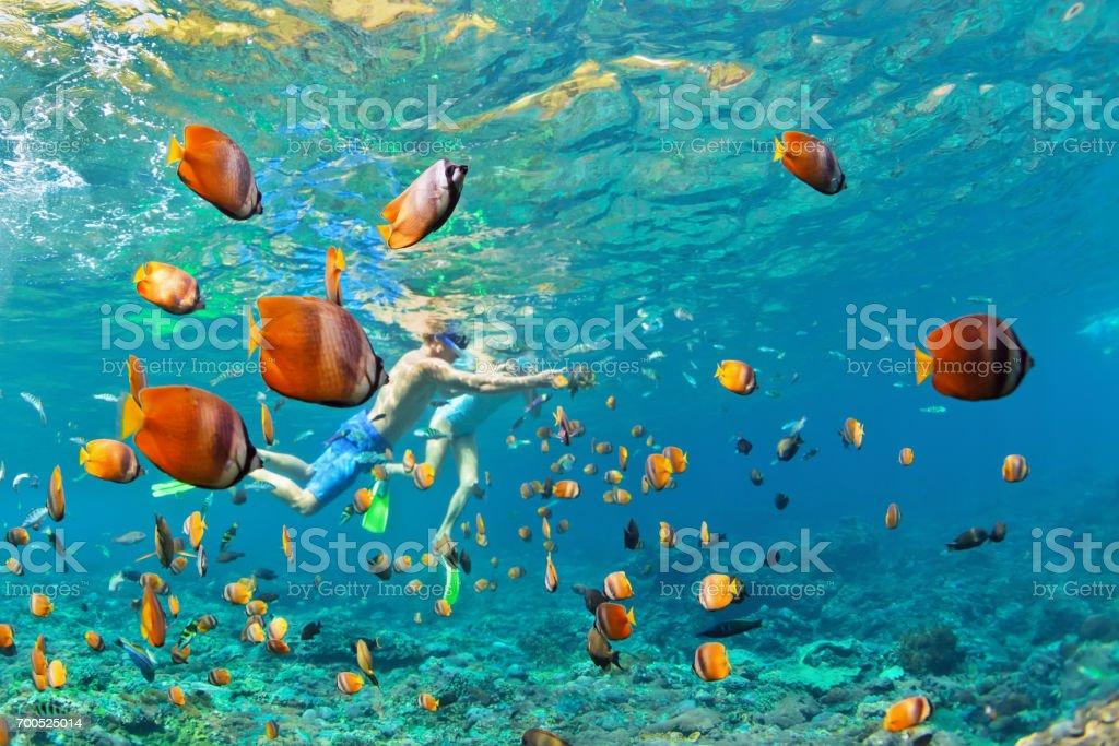Happy couple snorkeling underwater over coral reef stock photo