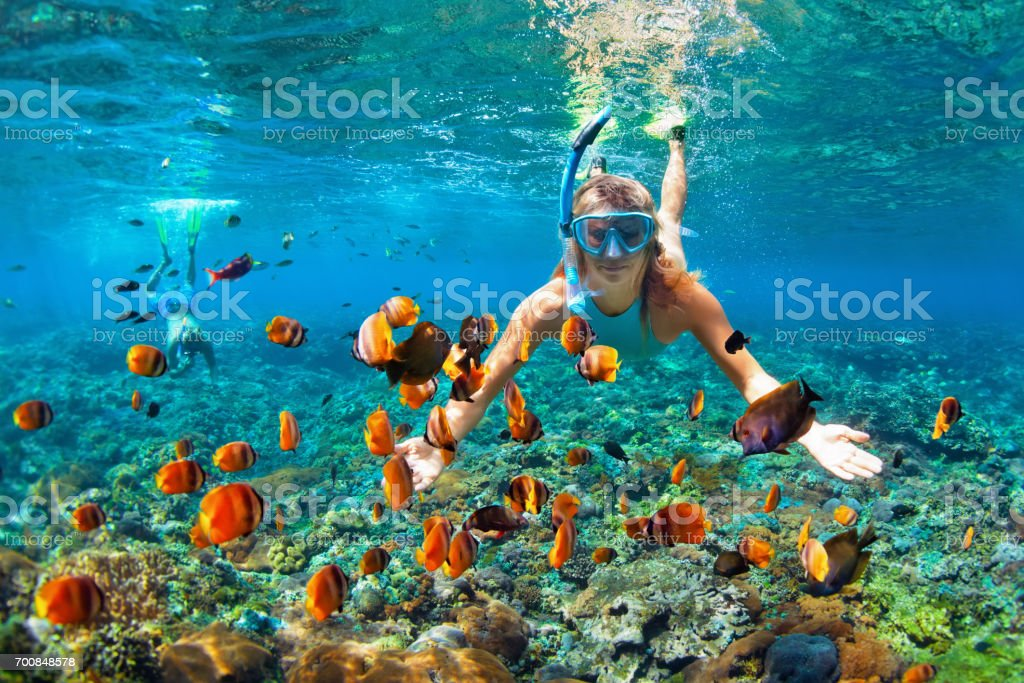 Happy couple snorkeling underwater over coral reef stock photo