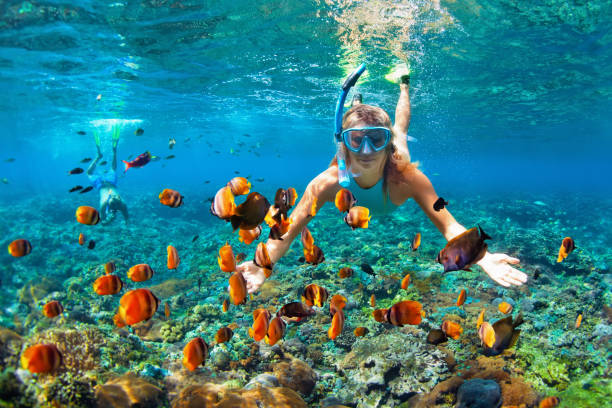 Happy couple snorkeling underwater over coral reef Happy family - couple in snorkeling masks dive deep underwater with tropical fishes in coral reef sea pool. Travel lifestyle, outdoor water sport adventure, swimming lessons on summer beach holiday underwater diving stock pictures, royalty-free photos & images
