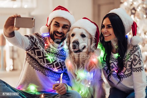 istock Happy couple with dog labrador retriever waiting for the New Year. 879631632