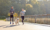 fitness, sport, people and lifestyle concept - happy couple with dog running outdoors