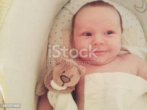Happy Cute Newborn Baby Boy In Moses Basket Stock Photo More