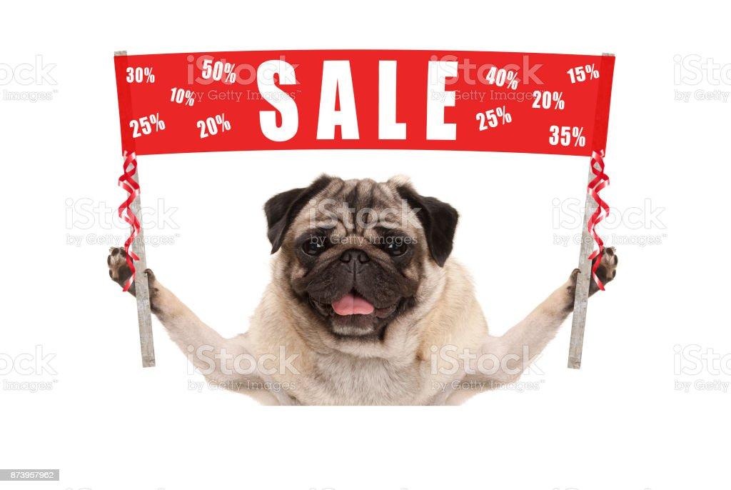Gelukkig schattig pug puppy hondje bedrijf rode promotie banner teken met tekst verkoop % af foto