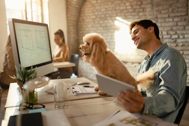オフィスのデスクで働くハッピーデザインの専門家と彼の犬。 - pc 入力 ストックフォトと画像
