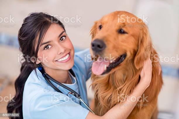 Happy doctor with a dog picture id520916035?b=1&k=6&m=520916035&s=612x612&h=p05kopnl7mc5mcnuwyyfvnmt9myczyxplkmdxkyg3z4=