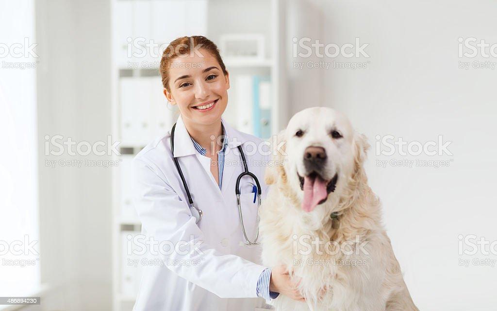Glücklich Arzt mit retriever Hund in Tierarzt Klinik – Foto