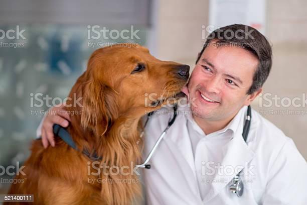 Happy dog at the vet picture id521400111?b=1&k=6&m=521400111&s=612x612&h=z qstdoya7rzpeg qcuai87hjtncobu0 8p gl rjre=