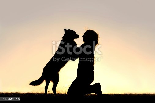 istock Happy Dog Jumping up to Greet Woman Silhouette 492534143