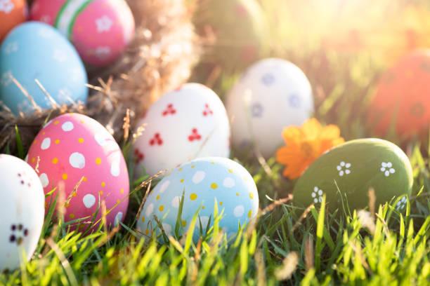 행복 한 부활절! 일몰 배경 동안 녹색 잔디 필드에 둥지에서 근접 촬영 화려한 부활절 달걀. - 부활절 달걀 뉴스 사진 이미지