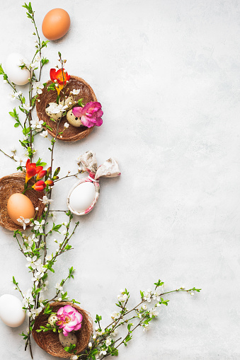 Happy Easter concept. Easter eggs with bunny ear napkin and spring cherry flowers on textured surface.   Top view, blank space