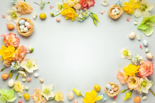 Frohes Osterkonzept mit Ostereiern im Nest und Frühlingsblume – Foto