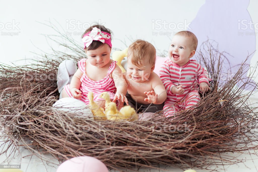 Happy Easter. Cute little baby girls and boy on Easter day. Kids hunting for Easter eggs in the handmade nest. Children having fun and playing with little baby ducks foto stock royalty-free