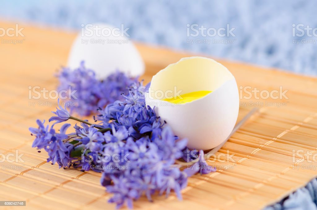 Happy  Easter decoration with spring flowers and egg shell stock photo