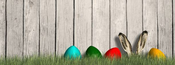 Happy Easter -Easter bunny with colorfull egs in green grass in front of wooden wall Happy Easter -Easter bunny with colorfull egs in green grass in front of wooden wall osterhase stock pictures, royalty-free photos & images