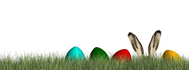 Happy Easter - Easter bunny with colorfull egs in green grass Happy Easter - Easter bunny with colorfull egs in green grass osterhase stock pictures, royalty-free photos & images